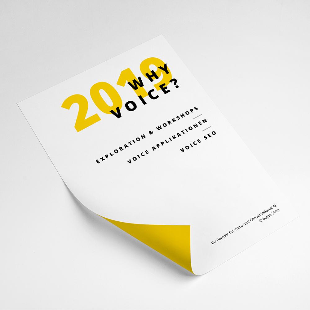 Warum Voice relevant ist